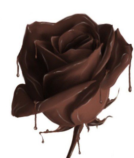 Poklonite nešto bilo kom forumašu - Page 6 Cokoladna-ruza