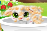 mobilne igre Paws to Beauty 6: Easter Edition