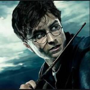 Harry Potter 27