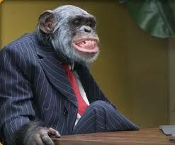 poslovni majmun