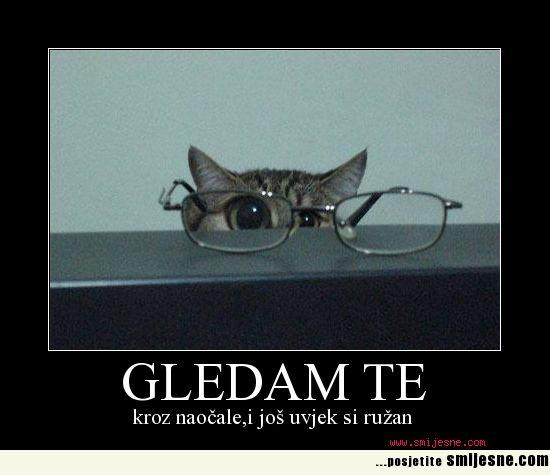 Naočalko