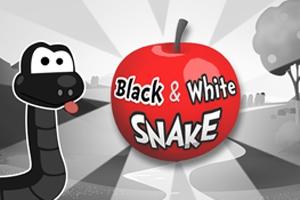 Black & White Snake