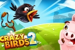 mobilne igre Crazy Birds 2