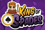 Igre na ploči King of Spades