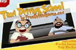 Taxi Driving School